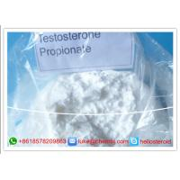 Wholesale Muscle Mass Testosterone Steroids CAS 57-85-2 Testosterone Propionate Injection from china suppliers