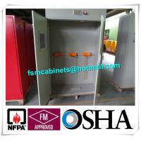 Quality Full Steel Flammable Gas Cylinder Drum Storage Cabinets , Lab Drum Gas Cyliner Storage Cabinets for sale
