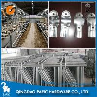 Wholesale Spring Adjustable Cattle Headlock Barn for Ruminant Animals' Farm from china suppliers