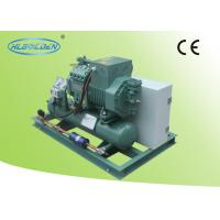 Wholesale Bitzer compressor cold room storage room air cooled condensing unit for food cooling from china suppliers