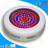Wholesale 90W LED Indoor Grow Lighting from china suppliers