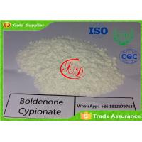 Wholesale Injectable Boldenone Steroid Boldenone Cypionate / Bold Cyp 106505-90-2 Factory Sources from china suppliers