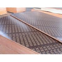 Wholesale Film Faced Plywood , form-work plywood , shuttering plywood from china suppliers