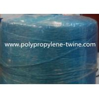 Quality Twist And  UV - Treated Agriculture greenhouse Twine PP Material Banana Tree Tying for sale