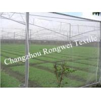Buy cheap Green PE Material Anti - Bee Netting / Garden Insect Control Netting Rolls from wholesalers