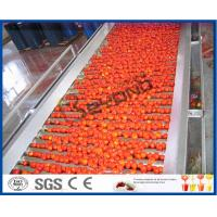 Wholesale Tomato Planting Machine Tomato Processing Line Full / Semi Automatic 2 - 50 T/H from china suppliers
