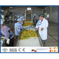 Wholesale Complete Turn key Project Mango Fruit Juice Processing Line High Engery Saving from china suppliers