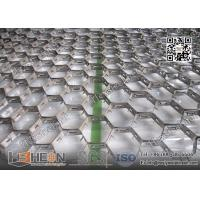 Quality Hex-Mesh Refractory Lining AISI309 19mm height X 1.5mmTHK | China Hex Metal Supplier for sale