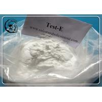 Wholesale Testosterone Enanthate Bodybuilding Supplement Steroid Hormone from china suppliers