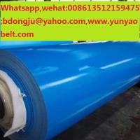 Quality PVC, PP, PU Plastic chain conveyor beltfrom chinese factory for sale