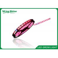 Wholesale Red and Blue 72W Flexible Led Strip Grow Lights Hydroponic Plant Growth Lighting from china suppliers
