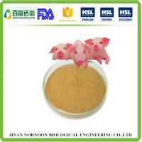 Wholesale Feed supplement alkaline protease feed enzyme from china suppliers
