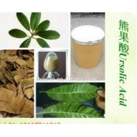 Wholesale Natural Rosemary Extract Ursolic acid 25% from china suppliers