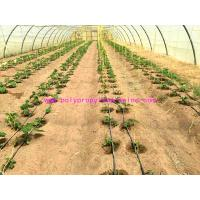 Wholesale 1g/m Stable Agricultural Tomato Tying Twine High Tenacity Different Colored from china suppliers