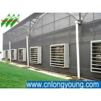 Buy cheap Plant House ,  farm house ,  grow light ,  cooling pad ,  cooling systems ,  evaporative cooling ,  spray cooling ,  greenhouse heaters ,  cooling pads ,  greenhouse design  ,  greenhouse cooling  ,  evaporative cooling system ,  greenhouse ventilation ,  evaporative from wholesalers