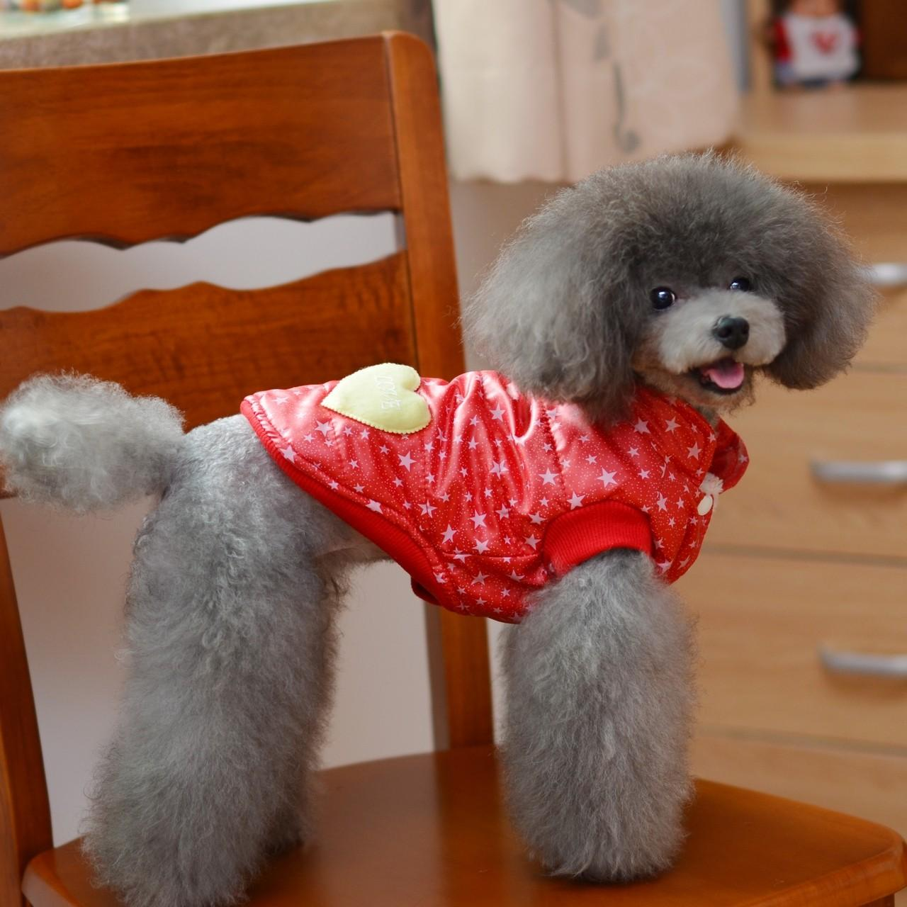 Wholesale Winter Fashion Red Stars vest 100% cotton Personalized Dog Clothes from china suppliers