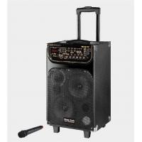 Wholesale Portable Microphone Rechargeable Trolley Speaker For Outdoor Party And Dancing from china suppliers
