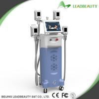 Wholesale Effective Results 12 inch Cryolipolysis Slimming Machine with CE from china suppliers