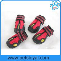 Quality Breathable Pet Mesh Shoes for Waterproof Dog Boots Reflective Velcro China Factory for sale