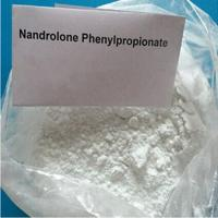 Wholesale CAS 62-90-8 Nandrolone Steroid / Nandrolone Phenylpropionate Muscle Building Steroids from china suppliers