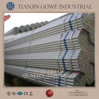Wholesale SGS Certificate Hot Dipped Galvanized Pipe for Double coupler / Fixed coupler 48.3 * 3.2mm * 6m from china suppliers