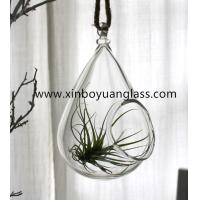 Wholesale Glass Globes Hanging Air Plant Terrarium Votive from china suppliers