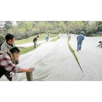 Quality agriculture nonwoven PP fabric for protect plant / ground / vegetation for sale