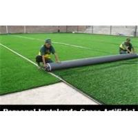 Wholesale Family leisure golf Nylon Artificial Grass Colourful , customized from china suppliers