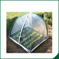 Wholesale PVC coated Garden tunnel greenhouse Home Garden Mini Greenhouse Warm Houses For Growing Trees from china suppliers