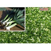 Wholesale Natural Green Dehydrated Vegetable Flakes Leek / Onion Flakes First Grade from china suppliers