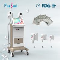 Wholesale 3 handles Cryolipolysis ce approved cryotherapy fat loss cryo liposuction machine for sale from china suppliers