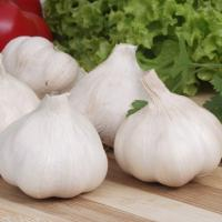 Wholesale High-quality white garlic from China is a hot seller,cheap,logistics is fast from china suppliers
