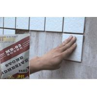 Buy cheap Outdoor Strong Waterproof Tile Adhesive , Marble And Mosaic tiles adhesive from wholesalers