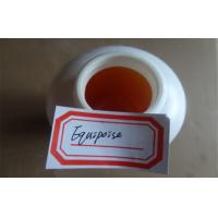 Wholesale Cas 13103-34-9 Body Building Steroids Injection Equipoise / Ultragan from china suppliers