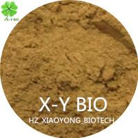 Quality Tea Seed Powder for sale