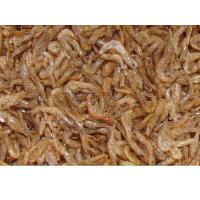 Wholesale SD Shrimp-Fish food from china suppliers