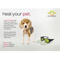 Wholesale Dimed Laser Treatment For Veterinary Pain Management , 810 / 910 / 980nm from china suppliers