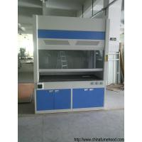 Wholesale Cold Rolled Steel Fume Hood , Chemical Scientists Lab Fume Cupboard from china suppliers