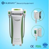 Wholesale Double Heads Portable Fat Freezing Machine Home Use Cryolipolysis body slimming machine from china suppliers