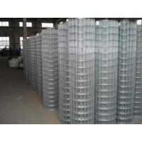 Wholesale Stainless Steel Wire Garden Border Fence Edging / Dutch Wire Mesh from china suppliers