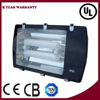 Wholesale Induction Flood Lighting from china suppliers