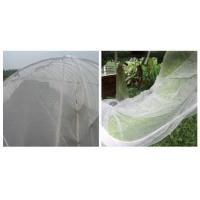 Buy cheap Anti Hail Nets Green Net for Olive Harvesting from wholesalers