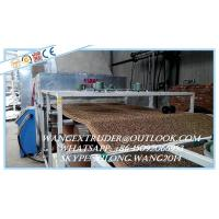 China PVC Coil Type Car Mat Production Line / Extrusion Machine