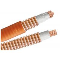 Wholesale Light Load Multicore High Temperature Cable BTTW 500V BS IEC Certification from china suppliers