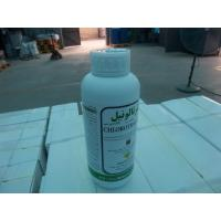 Quality Imidacloprid140g /L+Pencycuron 150g/L SC/mixed insecticides/Syria/lEBANON PESTICIDES for sale