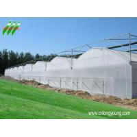 Buy cheap china cold frame shade cloth,  mini garden greenhouses,  plastics horticulture,  irrigation equipment,  solar greenhouse plans,  greenhouse kits,  greenhouse heaters,  greenhouse emission systems,  polycarbonate greenhouses company,  greenhouse vegetable,  raw mate from wholesalers