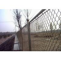 Wholesale Low Carbon Stee, Stainless Steel Diamond / Square Welded Wire Mesh Fences For River Banks from china suppliers