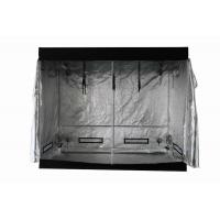 Wholesale Non-toxic Indoor Grow Room Tent , 240×240×200cm Hydroponics Large Home Box from china suppliers