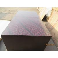 Wholesale CROWNPLEX brand film faced plywood,poplar core.Brown film faced Plywood from china suppliers