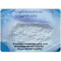 Wholesale 98% High Purity Primobolan Methenolone Enanthate 303-42-4 for Muscle Building from china suppliers